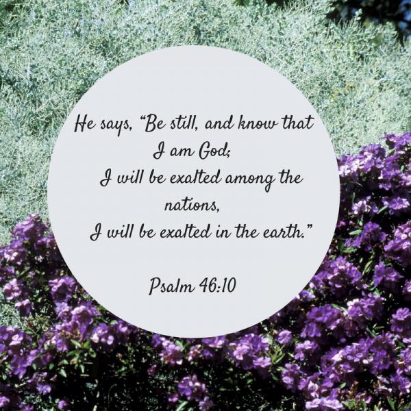 Be still verse