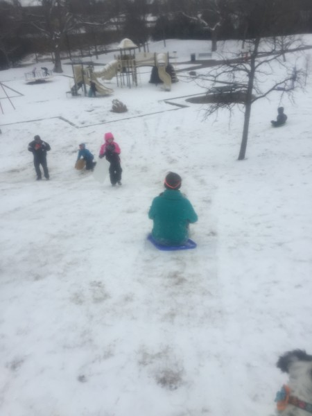 Ally snow 2015